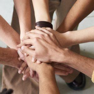 Permakultur Zusammenarbeit